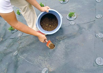 穴に改良土を充填し、水を含ませます。