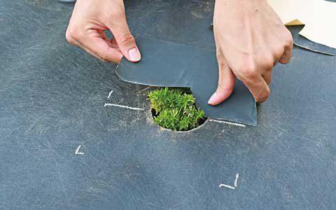 切れ目のある方を穴の中心線から10mm越えた位置に合わせて貼ります。